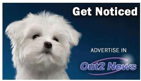 Out2News Logo