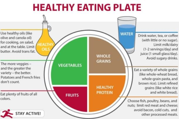 20 Aug Healthy Eating Plate