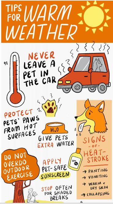 21 Aug Warm Weather