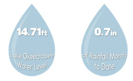 21 Sept Water Drops